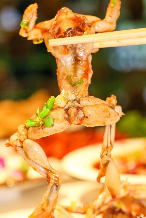 四川销量好的美蛙鱼头供应-推荐美蛙鱼头
