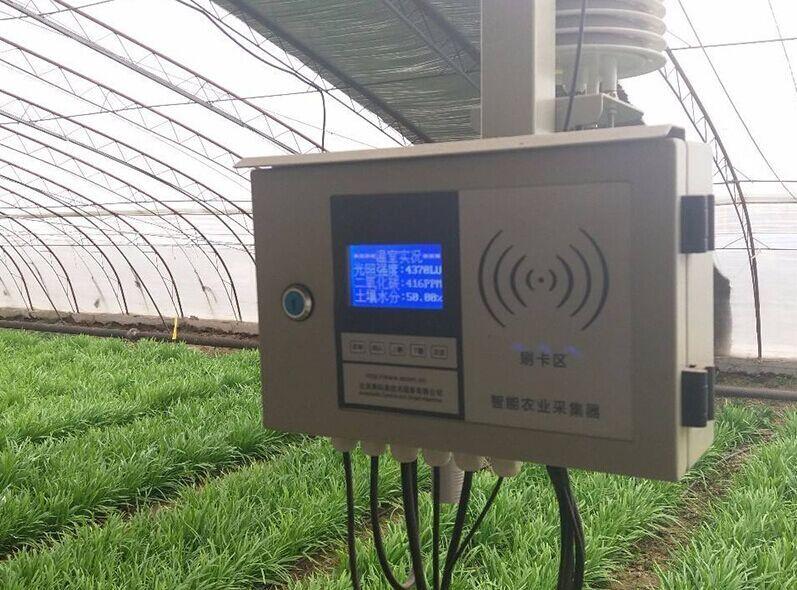 大棚物联网公司|潍坊可靠的温室大棚物联网供应商