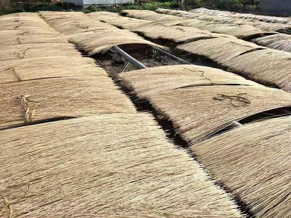 性价比高的丝条生产厂家|四川销量好的丝条生产厂家推荐
