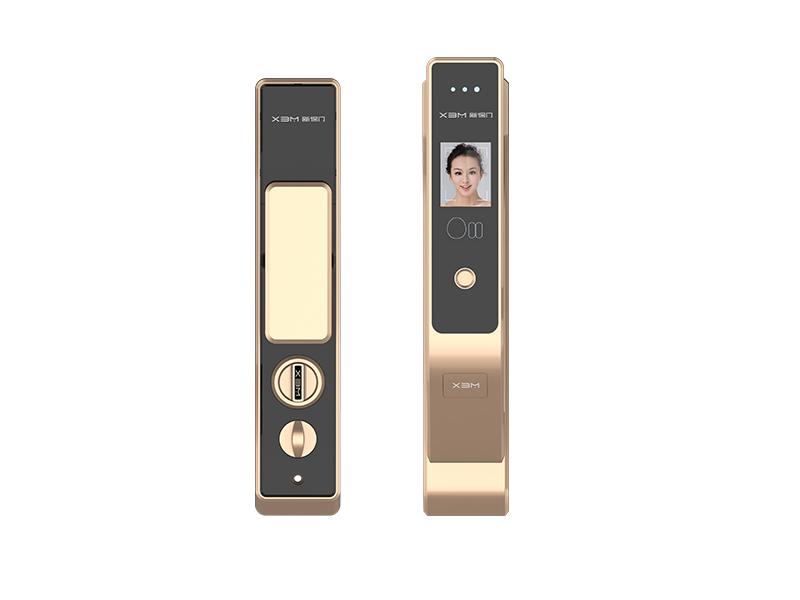 实惠的家居指纹锁|推荐中山品质好的家居人脸识别锁