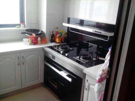 【拓友家居】lehu vip厨房电器 lehu vip厨房电器价格lehu vip厨房电器哪家好