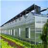 蔬菜大棚哪家便宜-口碑好的江蘇蔬菜大棚公司