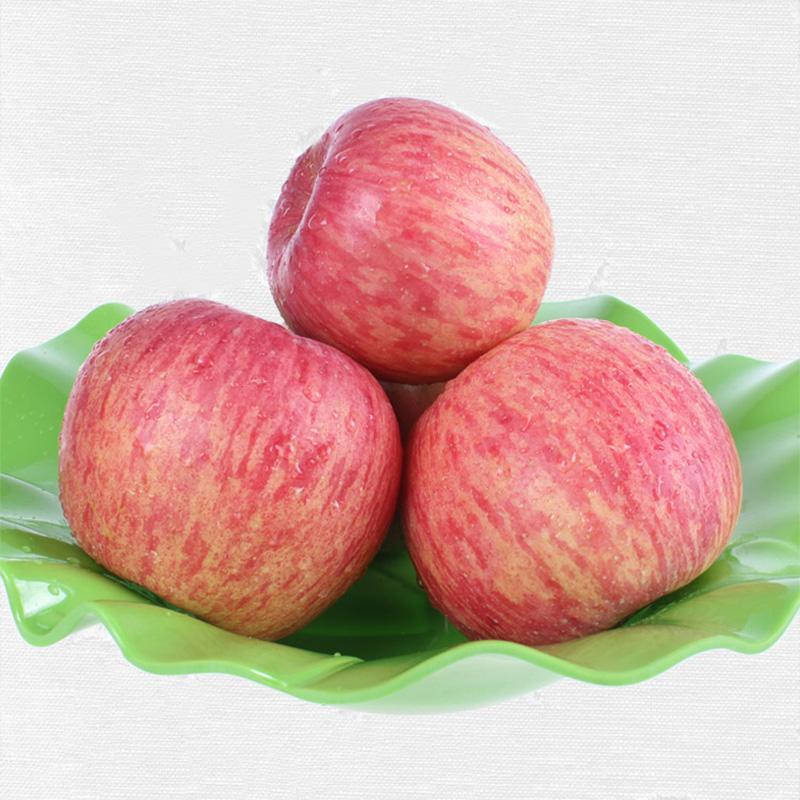 美味的苹果|赤峰销量好的宁城苹果批售