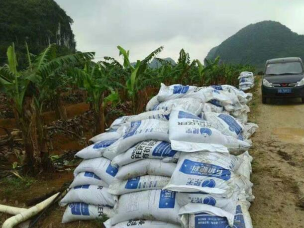 南宁有机肥厂家直销_实惠的有机肥哪里有