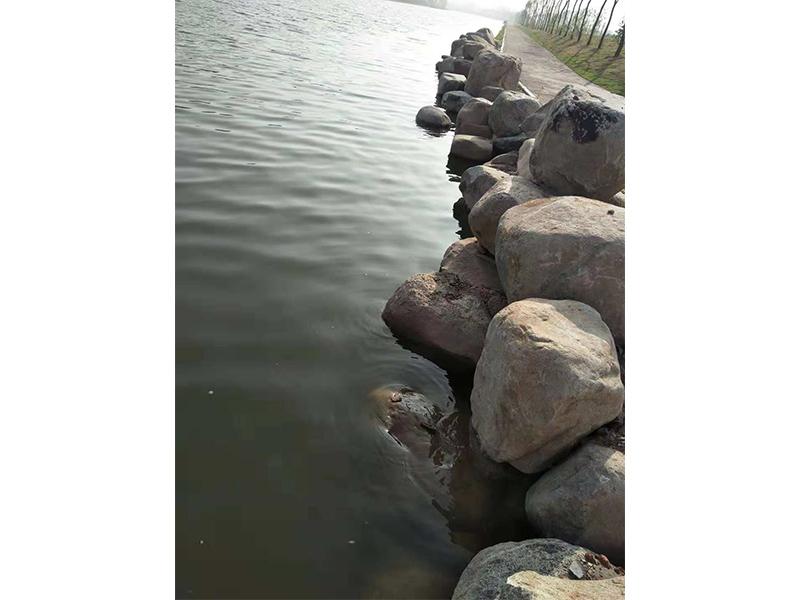 鹅卵石-润园口碑好的鹅卵石驳岸销售商