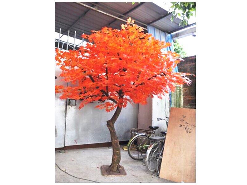 外贸假红叶枫树-口碑好的仿真枫树哪里买