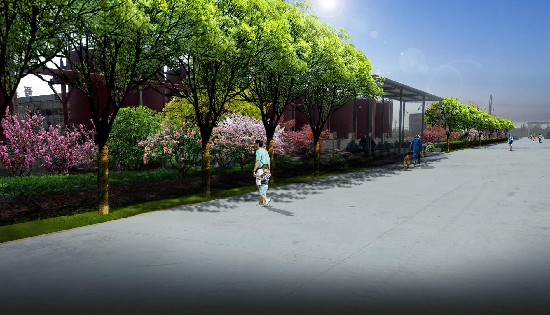 绿化苗木怎样种成活率高,绿化养护公司,江瑞园艺