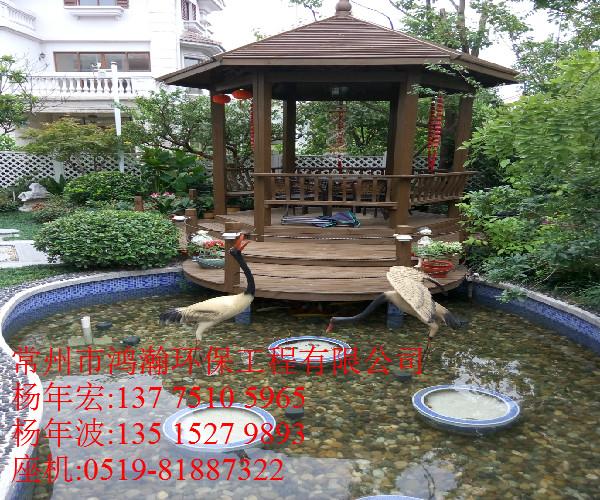 江阴市别墅户外景观鱼池水净化系统