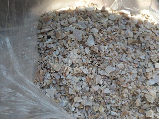 江西贝壳粉|辽宁宏洋贝壳供应优良的贝壳粉