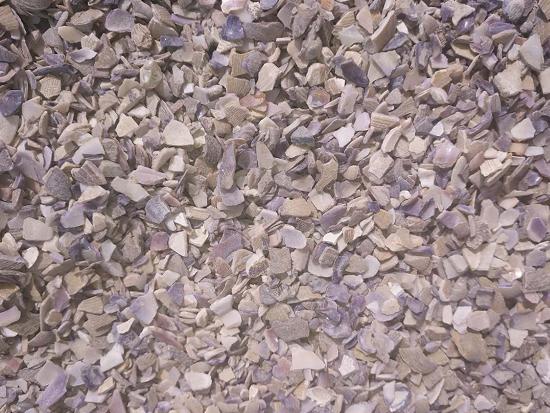 丹东饲料贝壳粉-高质量的饲料贝壳粉辽宁宏洋贝壳供应