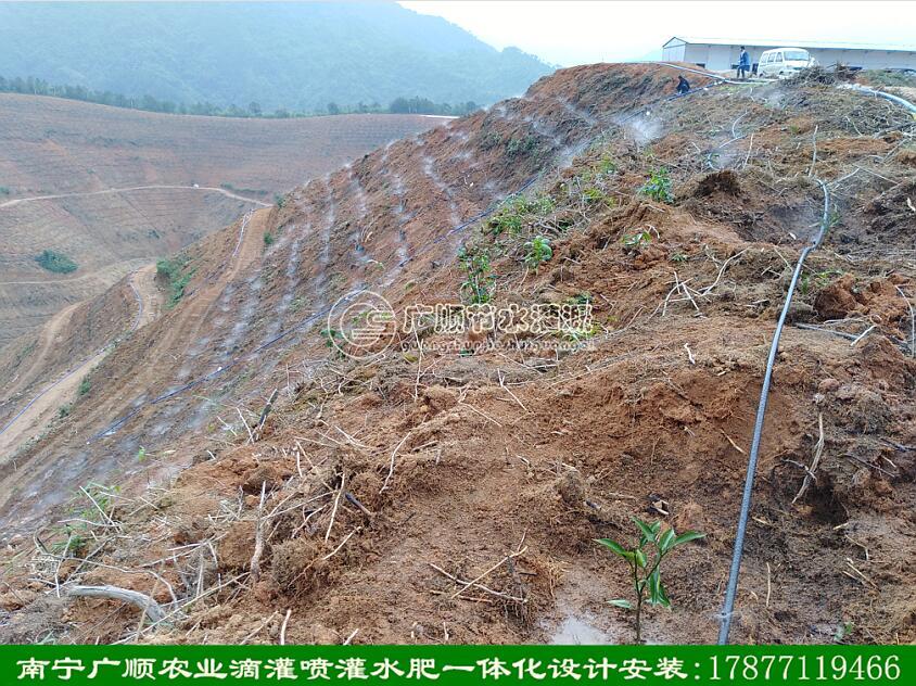 水肥一体化_广西优惠的果树高效喷头 水肥一体化
