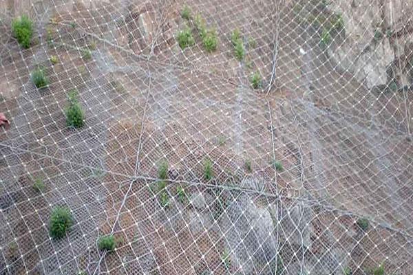工程网采购-价格适中的海南钢丝网是由海口银鸿筛网提供