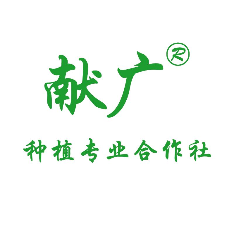 临沂市河东区献广苗木种植有限公司