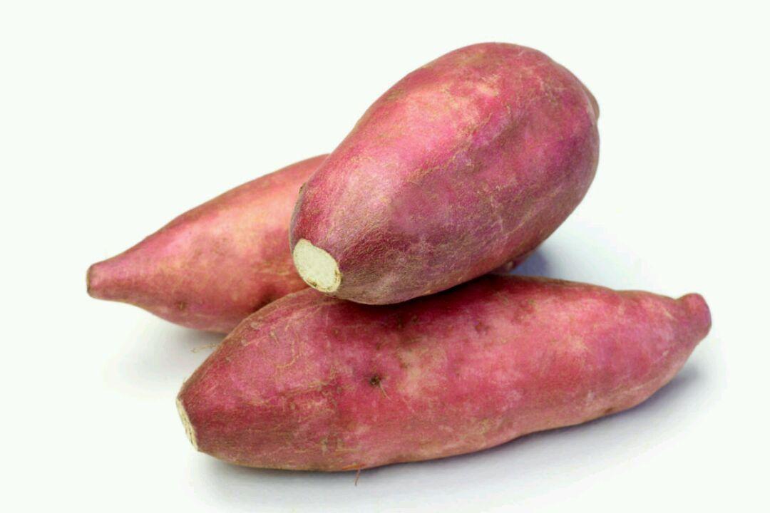 红薯供应|山东划算的,红薯供应