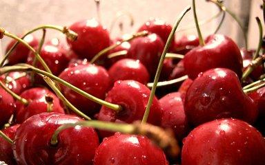 杭州果蔬配送|杭州嘉缘农副产品靠谱的果蔬配送服务推荐