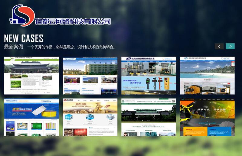 宿州企業網站建設_知名的網絡服務服務商