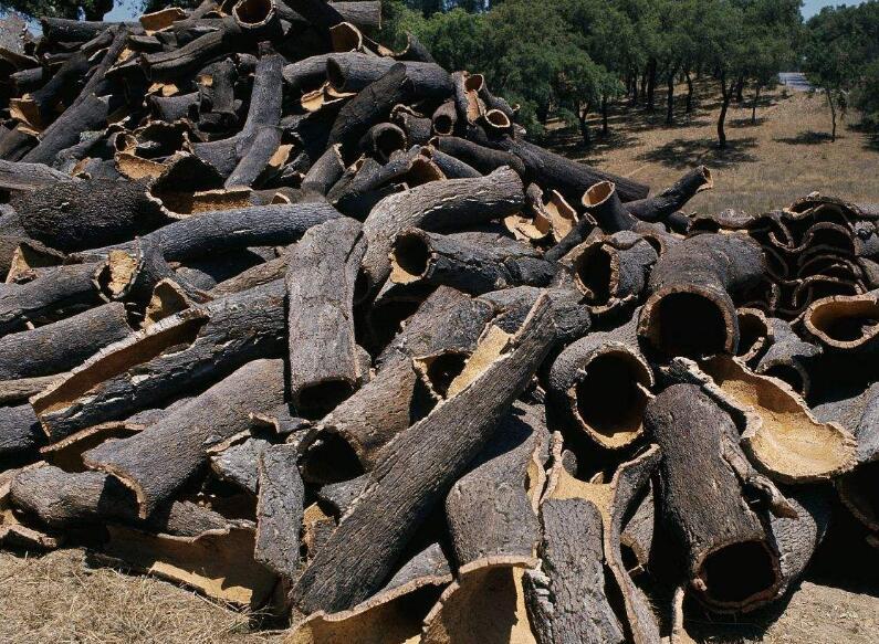 咸阳收购栓皮厂家-可靠的收购栓皮勤兴软木制品提供