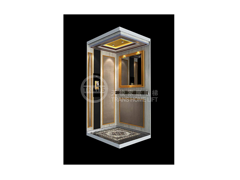 开封家居电梯厂家-专业的家居电梯当选天梭家居电梯