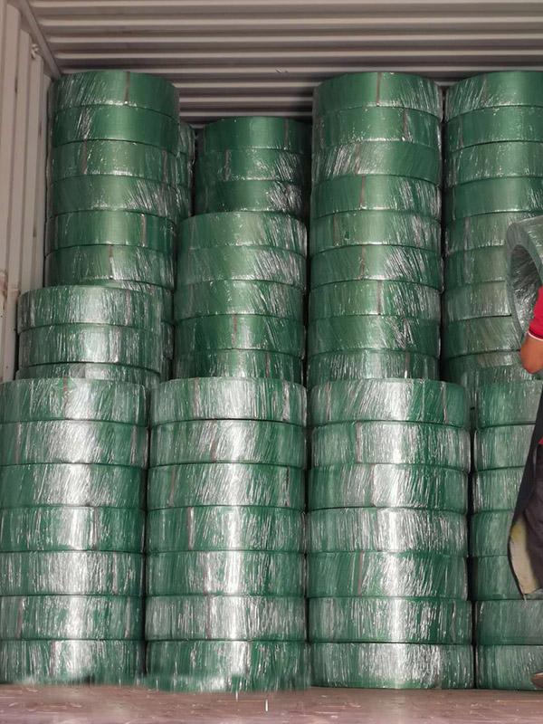 莆田塑钢带厂家直销|哪里买实用的供应塑钢带