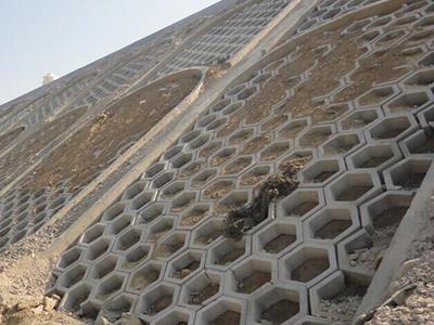护坡砖专业经销商-护坡砖