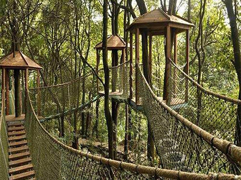 上饶丛林穿越设备价格-丛林穿越设备哪里有卖