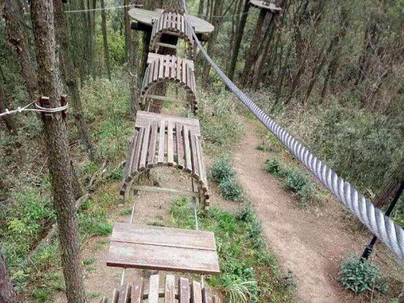 鄂州丛林穿越设备厂家-新式的丛林穿越设备就在天赐游乐设备