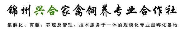 锦州兴合家禽饲养专业合作社
