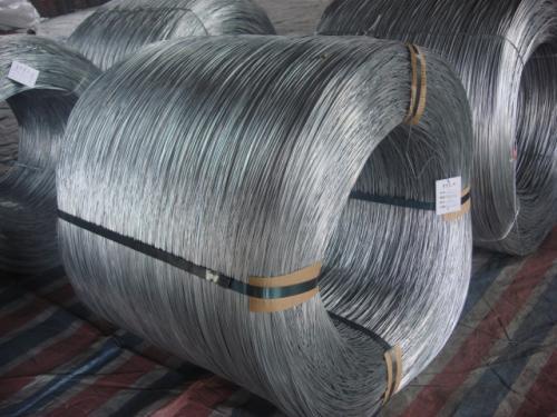 台州镀锌丝价格-供应东海线材厂实惠的镀锌丝