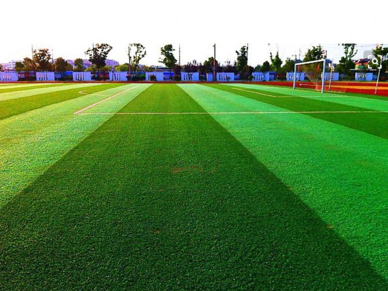 人工草坪生产厂家-想买口碑好的人工草坪就来庭久体育场地工程