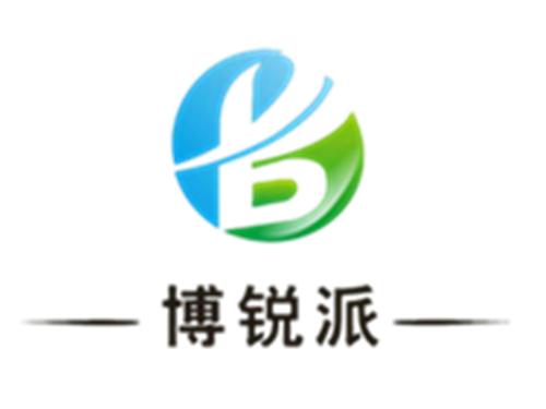 渭南博锐派水处理有限公司