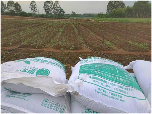 南宁茄果有机肥出售-想买实惠的茄果有机肥-就到肥源