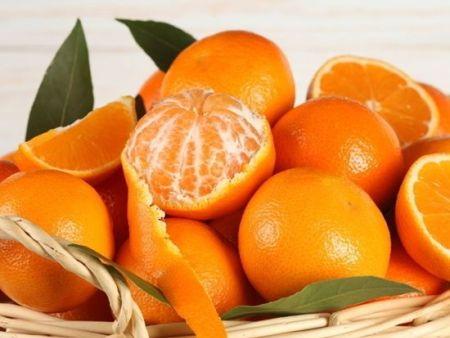 水果配送-可信赖的厦门食维鲜提供商|水果配送
