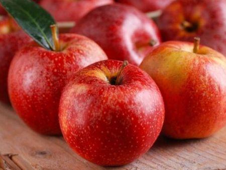 水果批发配送中心-靠谱的厦门食维鲜水果配送就在食维鲜食品有限公司