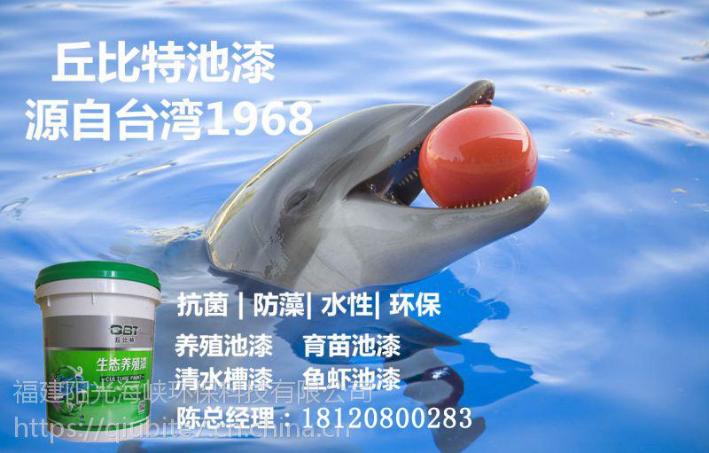 福建地区销量好的台湾丘比特养殖池漆怎么样_台湾丘比特养殖池漆专卖店