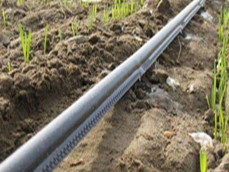 玉門迷宮滴灌帶-口碑好的迷宮滴灌帶—潤澤源節水灌溉科技價格怎么樣