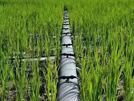永宁PE软带|银川哪里有质量好的PE软带—润泽源节水灌溉科技