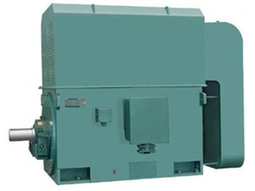 Y系列6kv450-10P 专业供应商洛大中型高压2019马报资料白小姐