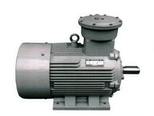 YD132M-4/2-可信赖的铜川防爆电机品牌推荐