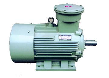 YZR280S-10-专业供应海西防爆电动机