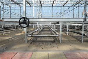 中國溫室苗床網-河北優良溫室苗床網生產企業