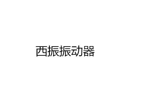安阳西振振动器有限公司