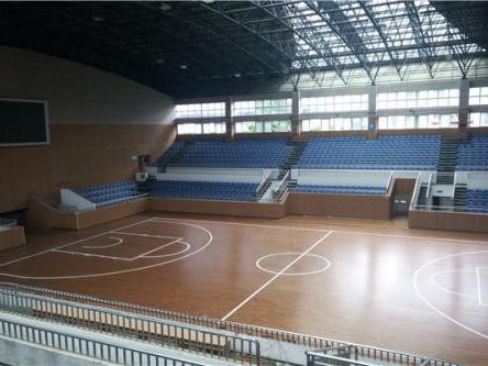 篮球馆地板-供应沧州价格合理的运动木地板