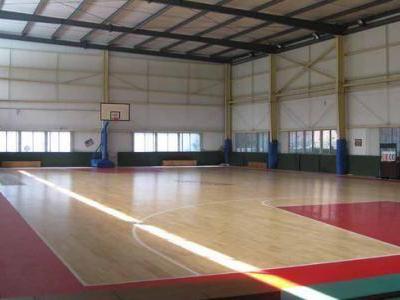 运动木地板供应商_沧州不错的运动地板