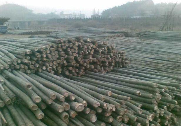 工致的竹制品材料_乐山口碑好的竹制品材料上哪买