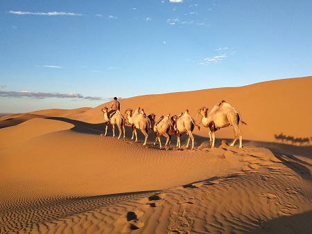 口碑好的内蒙古沙漠旅游公司_沙漠旅游价格