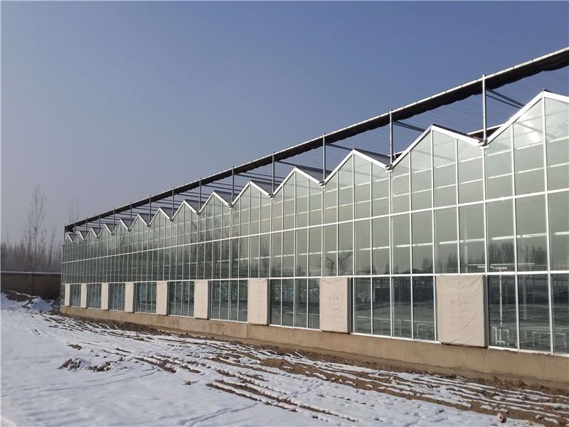 供应连栋薄膜温室大棚骨架农业塑料大棚可定制加工花卉养殖大棚