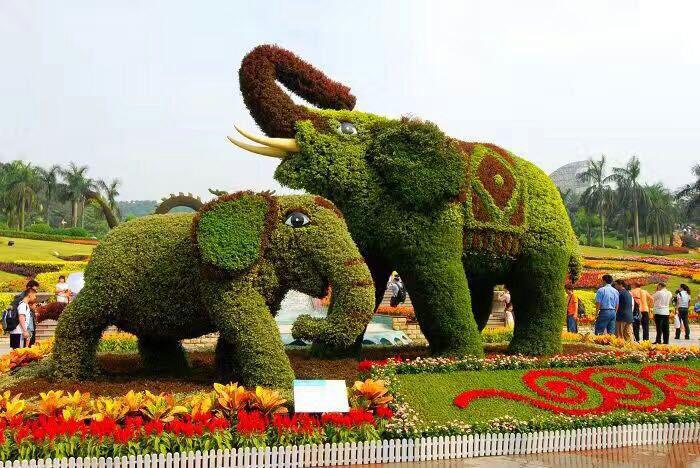 动物绿雕怎么施工_精致的动物绿雕供应