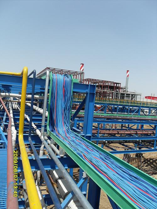 衡水玻璃钢梯式电缆桥架 玻璃钢梯式电缆桥架多少钱