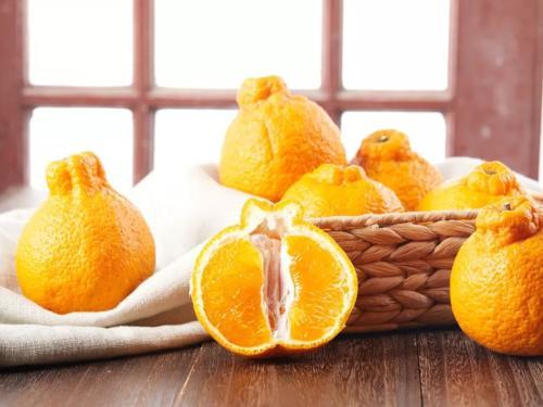 哪兒批發的橘子優惠-眉山不知火價格范圍