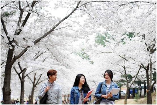 招生招考|出国留学|韩语培训